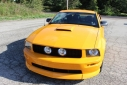 2008 Ford MUSTANG GT PREMIUM COUPE image-1