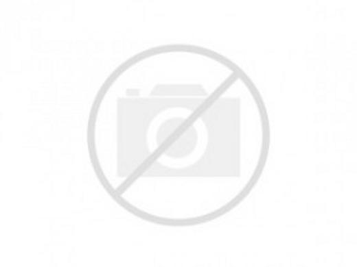 2006 DODGE GRAND CARAVAN SE BRAUN MOBILITY TRANSFER SEAT