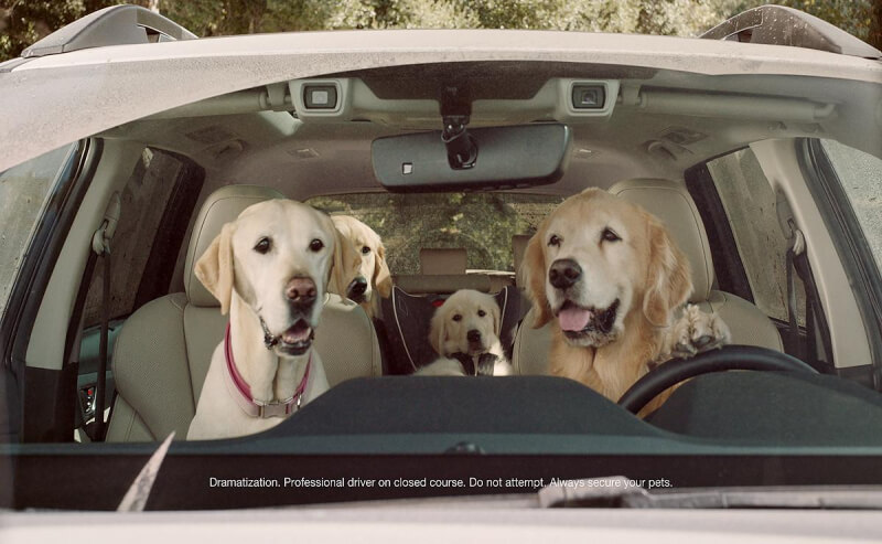 "The ""Dog Tested. Dog Approved"" ad campaign is back"