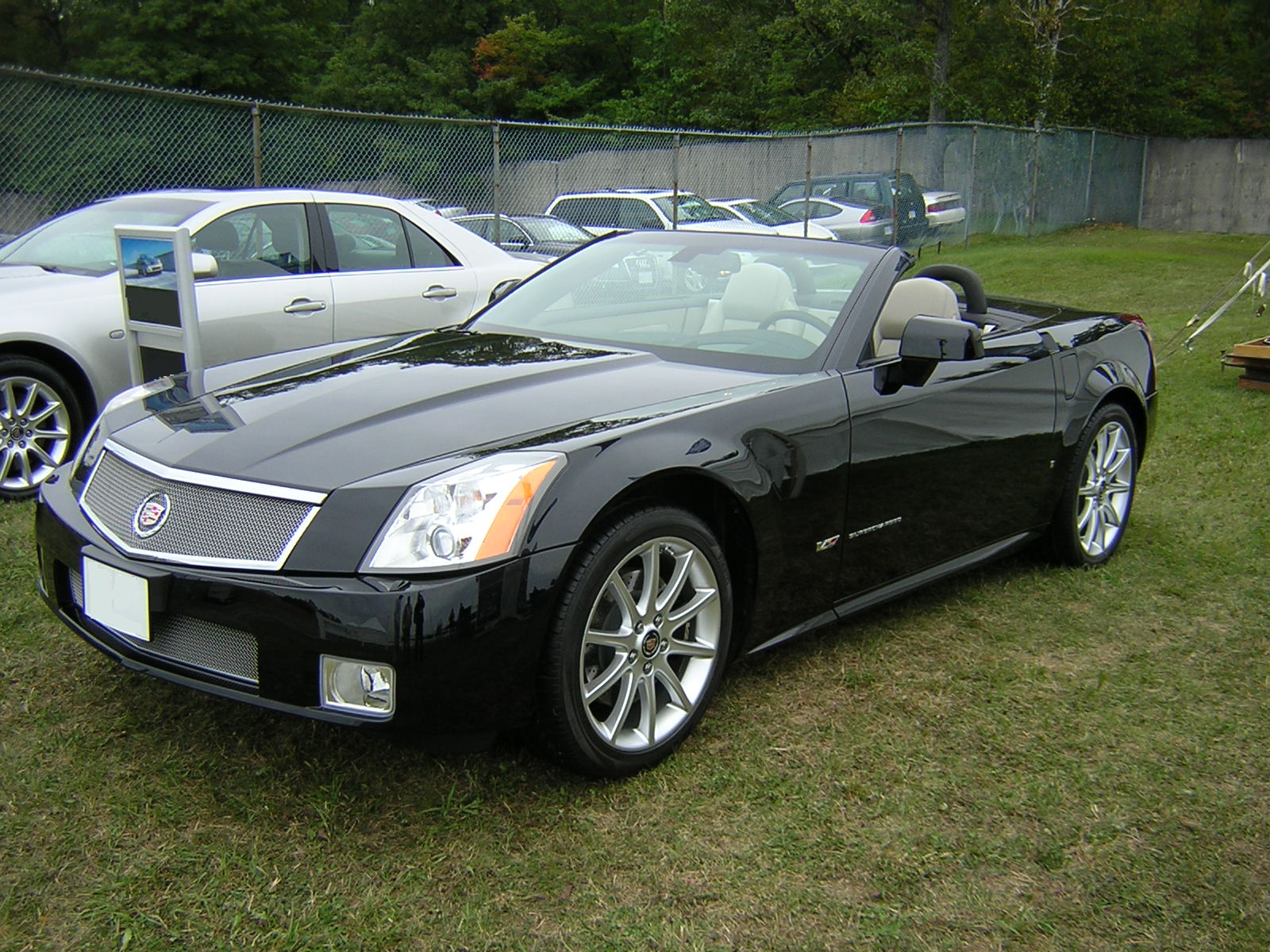 scorpio, BMW, Mercedes, Cadillac BLS, Honda Legend, Honda Jazz, Lexus, Hammer
