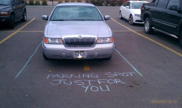 22 Exceptionally Bad Parkers