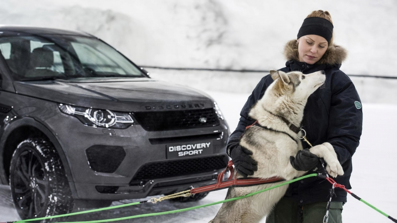 The new Land Rover Discovery Sport races dog sled team